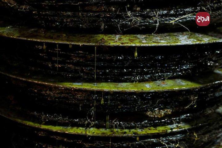 جولة في معصرة الزيتون الحجرية