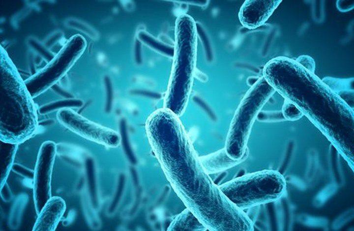 كيف تتمكن البكتيريا من العيش في الفضاء ؟