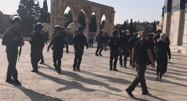 الاحتلال يستدعي أمين سر فتح ويعتقل شابا في القدس المحتلة