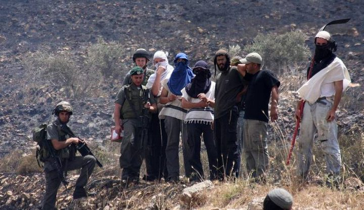 مستوطن يتسهار يحرثون أراضي المواطنين جنوب نابلس