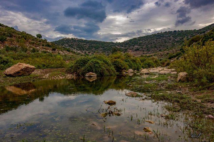 سحر الطبيعة في وادي قانا عدسة : محمود معطان