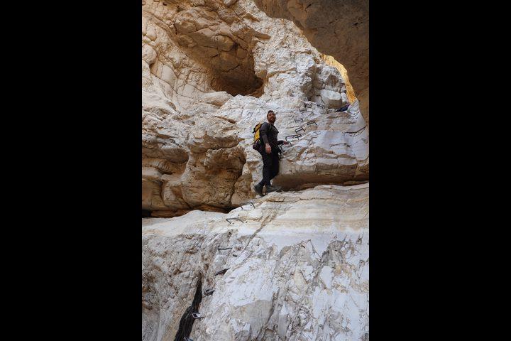علاء الهموز دليل سياحي يضع فلسطين في أبهى صورها للسياح