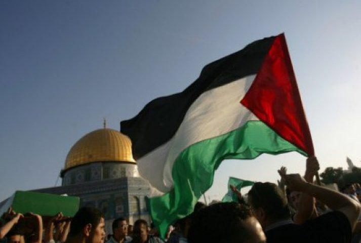 تنسيق العمل الأهلي يدعو للمشاركة في يوم التضامن الدولي مع فلسطين