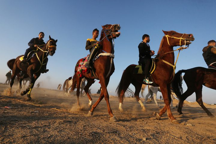 متسابقون يشاركون في سباق الهجن في المطار الدولي بمدينة رفح