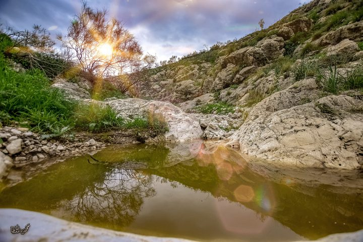 جانب من وادي الفيران في الأغوار الشمالية عدسة : محمود معطان