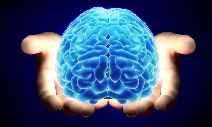 اكتشاف طريقة تكوين الدماغ للذاكرة الاستشعارية