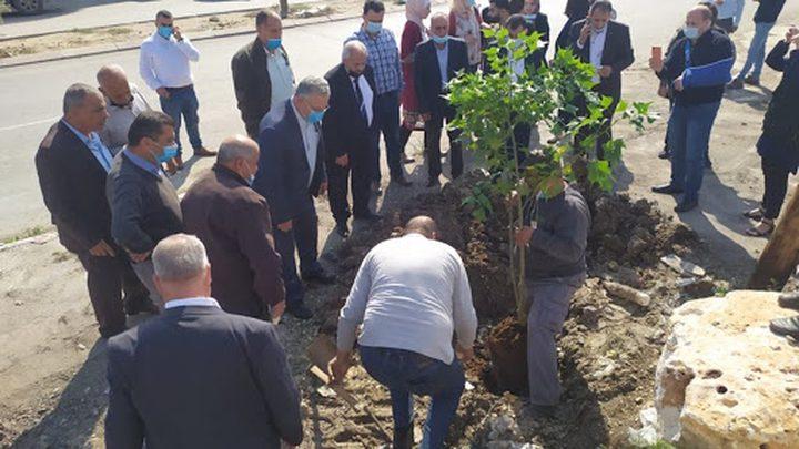 فعالية لزراعة أشجار في محيط المدارس غرب طولكرم