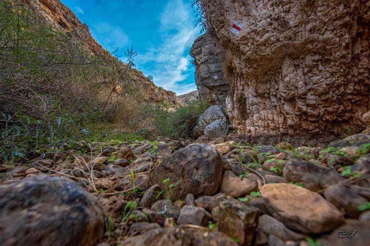 جمال الطبيعة في وادي اللصم بأريحا