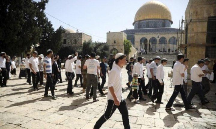 مستوطنون يقتحمون الأقصى بحماية قوات الاحتلال