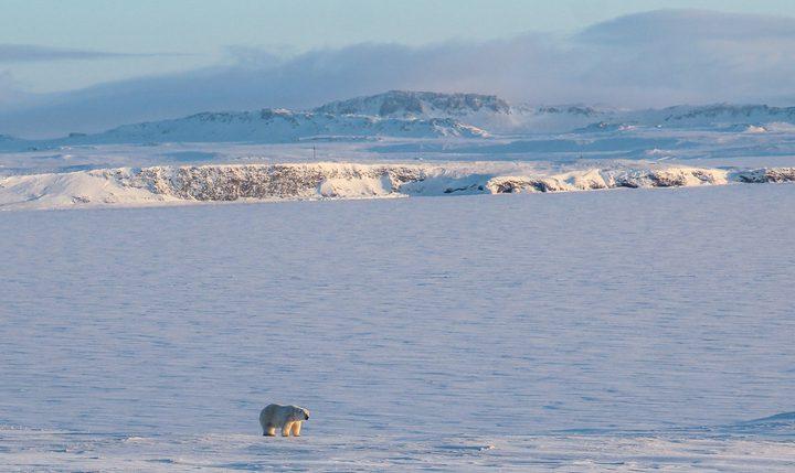 ارتفاع حرارة القطب الشمالي بوتائر قياسية