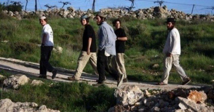 أهالي كيسان شرق بيت لحم يتصدون لمستوطنين هاجموا منازلهم