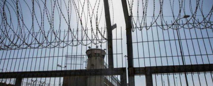 الأسير وسيم اسعيد يواصل إضرابه عن الطعام