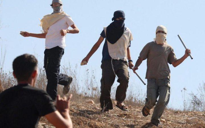 نابلس: إصابة عدد من المواطنين بعد هجوم مستوطنين على مركباتهم