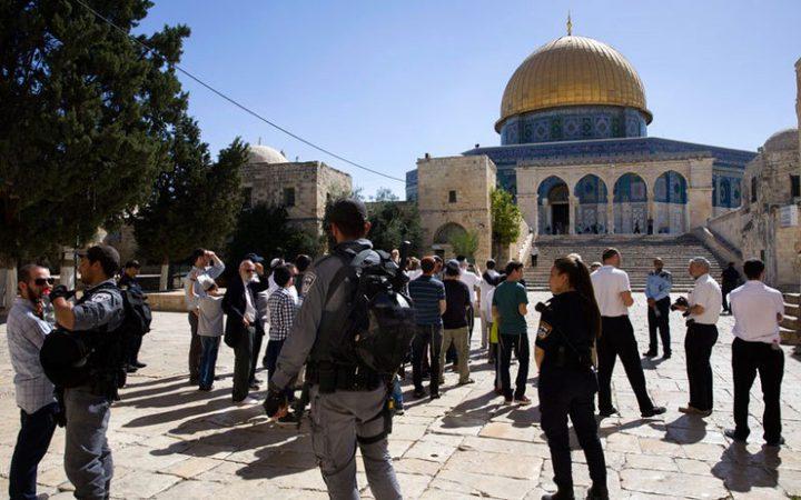 108 مستوطنين يقتحمون المسجد الأقصى