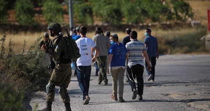 مستوطنون يعتدون على مواطن بمنطقة عرب الرشايدة