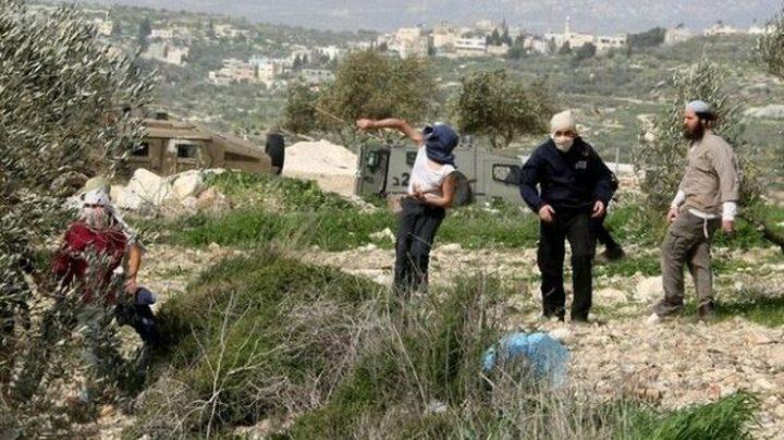 اعتداءات على المواطنين في رام الله وسلفيت وتجريف اراضٍ بالأغوار