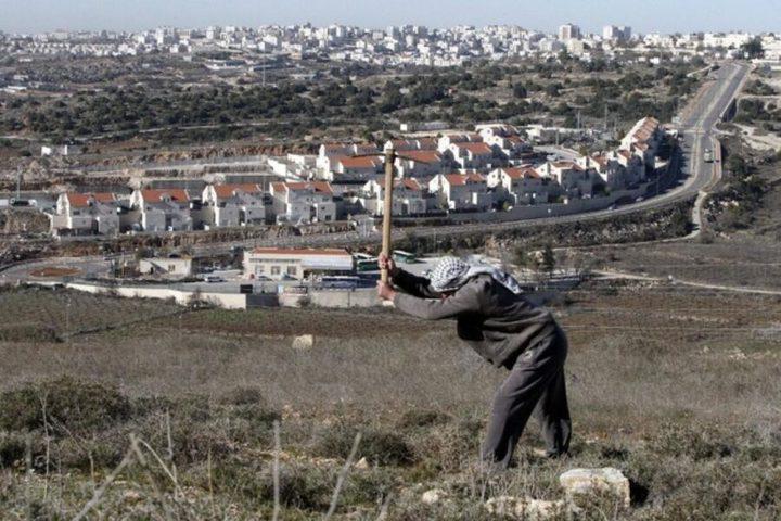 """""""إسرائيل"""" بصدد المصادقة على بناء 850 وحدة استيطانية في الضفة"""