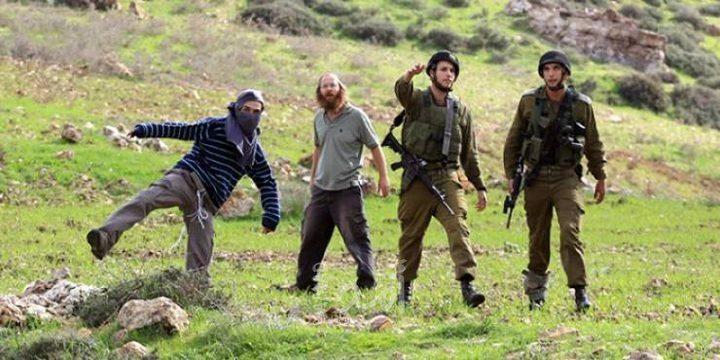 مواطنون يتصدون لهجوم مستوطنين شرق قلقيلية