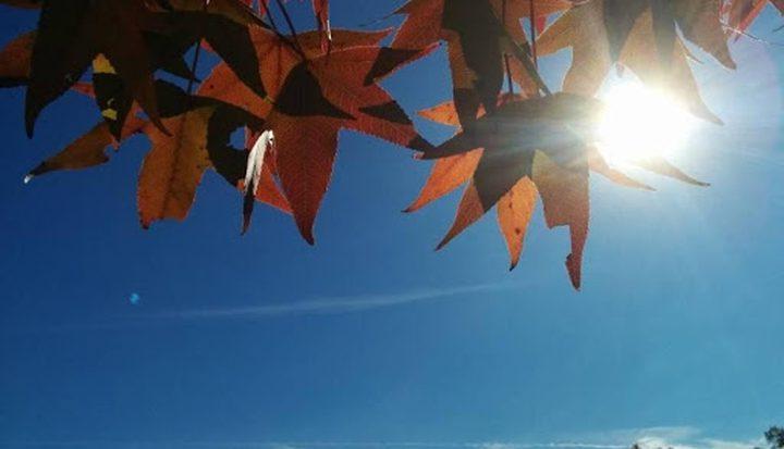 الطقس: ارتفاع على درجات الحرارة مع بقاء الأجواء باردة