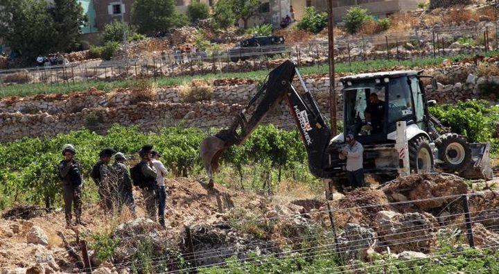 الاحتلال يقتلع عشرات أشجار الزيتون ويجرف أراضيجنوب بيت لحم