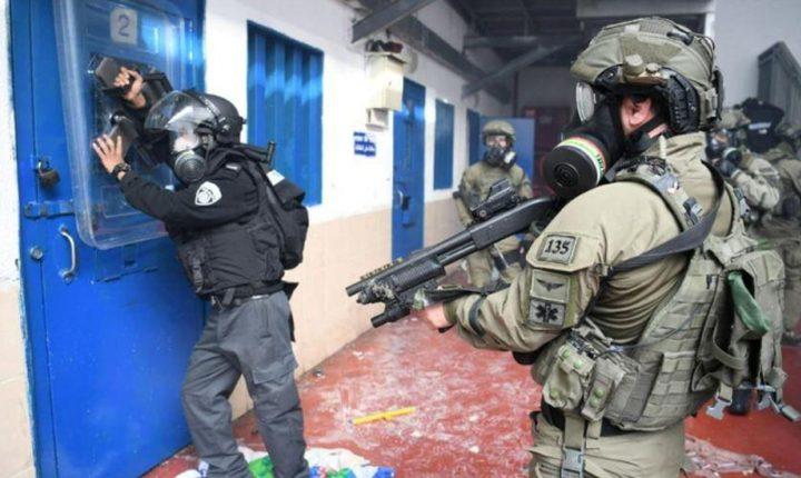 """""""الهيئة"""": قوات الاحتلال اقتحمت سجن جلبوع ونكلت بالأسرى"""
