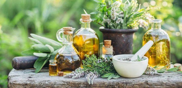 أعشاب سحرية للوقاية من أمراض الرئة وتعزيز صحة الجهاز التنفسي
