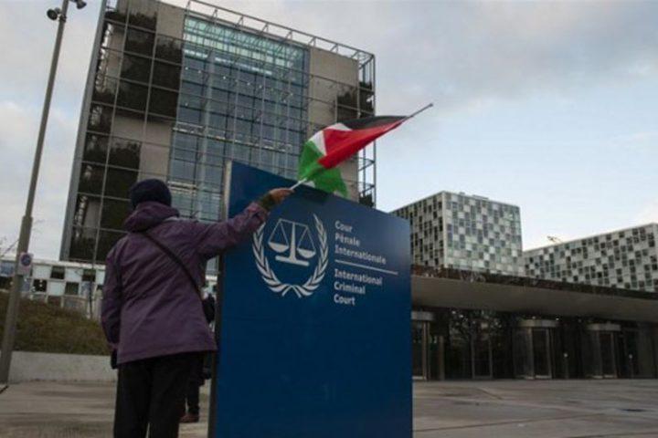 الأزهر يرحب بقرار الجنائية الدولية بولايتها على فلسطين