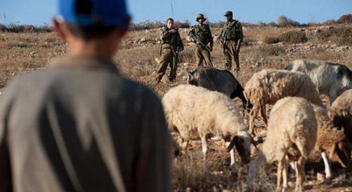 مستوطنون يعتدون على رعاة أغنام شرق يطا