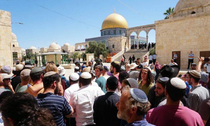 اعتقال 3 مواطنين من داخل حرم المسجد الأقصى
