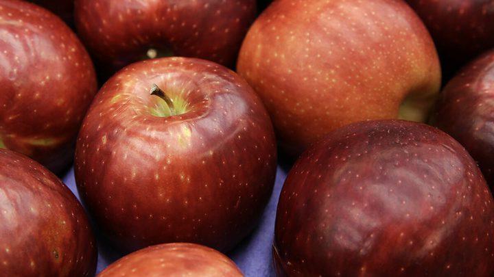 تأثيرات لن تتوقعها للتفاح على الدماغ
