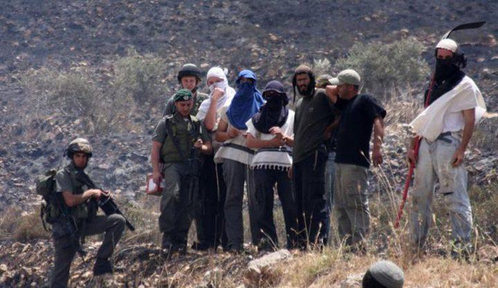مستوطنون يعتدون على عائلة في قرية عراق بورين جنوب نابلس