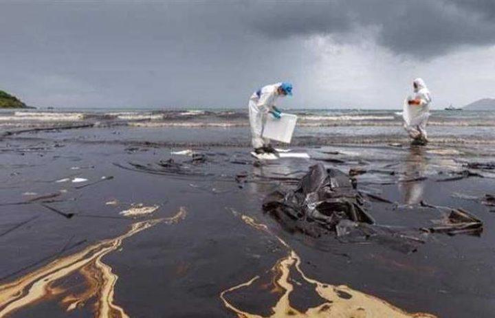 منع الإتجار بأسماك البحر الأبيض المتوسط بسبب الكارثة البيئية