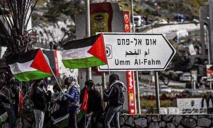 شرطة الاحتلال تعتقل شابا في أم الفحم