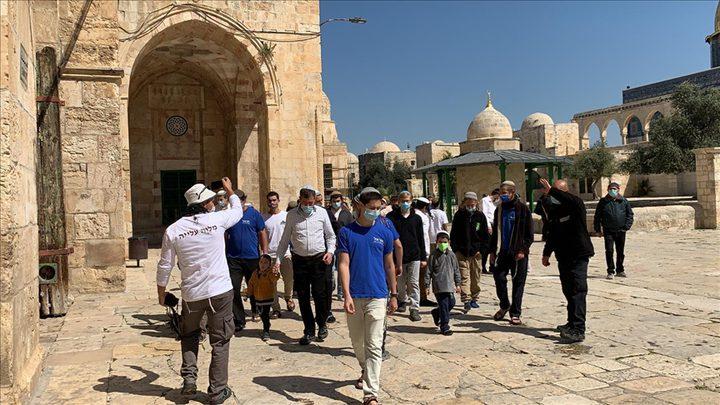313 مستوطنا يقتحمون المسجد الأقصى