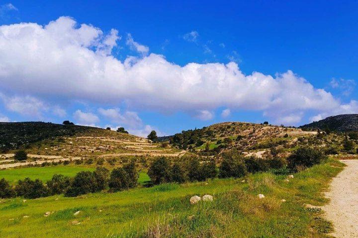 جمال الطبيعة في قرية المجد جنوب غرب مدينة الخليل    تصوير: وفاء مشارقة