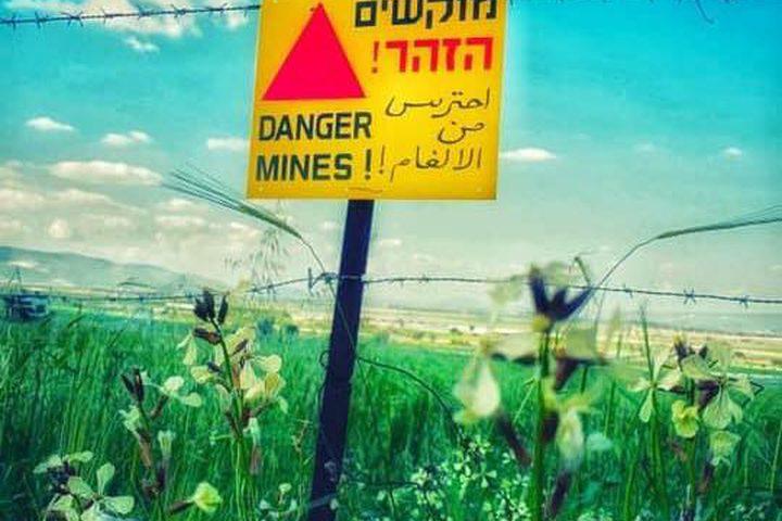الطبيعة الساحرة في منطقة عين الساكوت والحدود الأردنية الفلسطينية  تصوير: سند حمدان