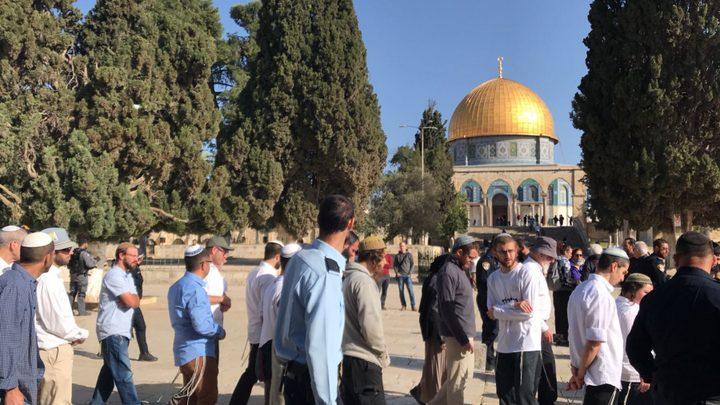 عشرات المستوطنين يقتحمون ساحات المسجد الاقصى
