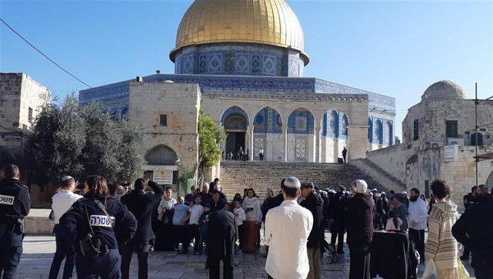 عشرات المستوطنين يقتحمون باحات المسجد الأقصى المبارك