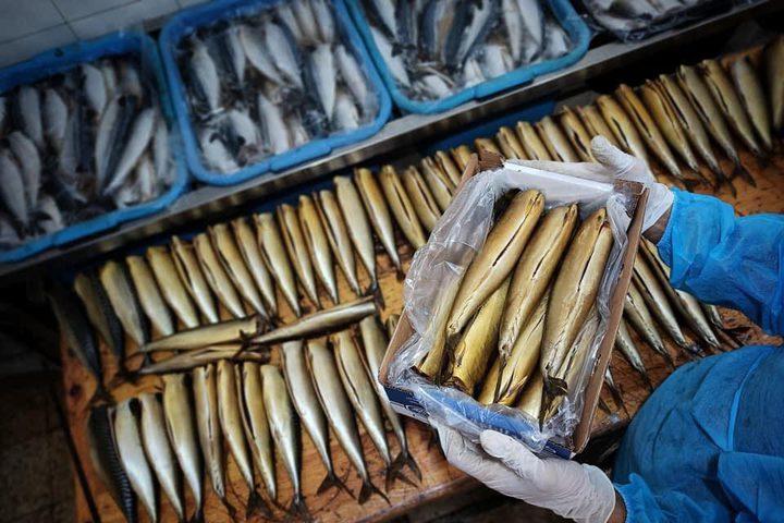 """تجهيز سمك """"الرنجا"""" المُدخن في مدينة رفح لتسويقها في عيد الفطر"""