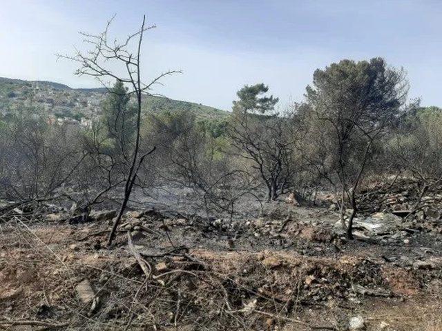 تحذير من إشعال النار إثر اندلاع حرائق في وادي عارة وام الفحم