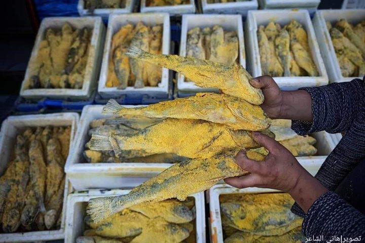 الفسيخ المُملح الأصفر يُزين أسواق محافظة خان يونس جنوبي قطاع غزة، قبيل أيام من عيد الفطر المبارك