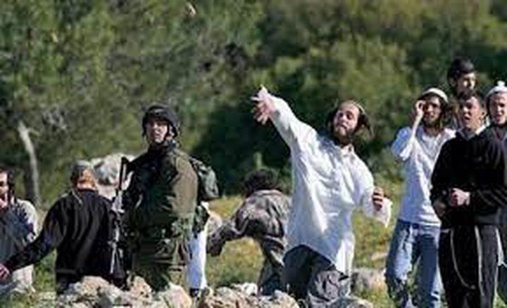 إصابة متضامنين أجنبيين في اعتداء للمستوطنين جنوب الخليل