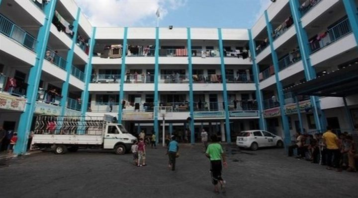 الصليب الأحمر: 50 ألف مواطن نزحوا إلى مدارس الأونروا بغزة