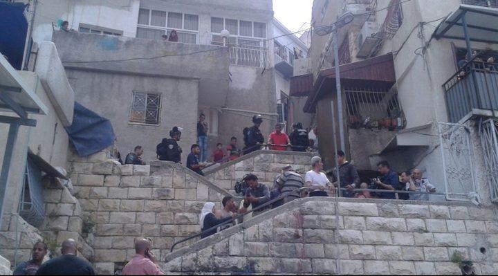الهدمي يحذر من محاولة الاحتلال تهجير أهالي بطن الهوى في سلوان