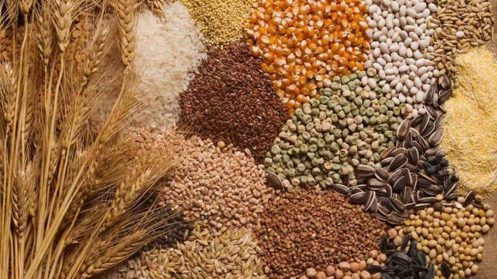 ما هي الحبوب الضرورية للحصول على أمعاء صحية ؟