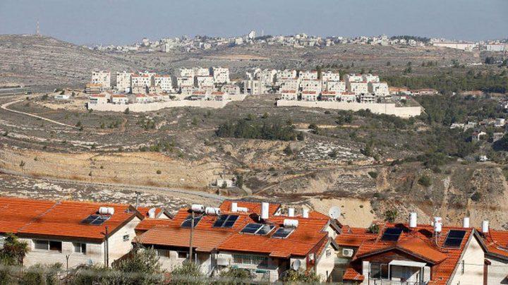 عساف:المستوطنون استغلوا العدوان على غزة لإقام بؤر استيطانية جديدة