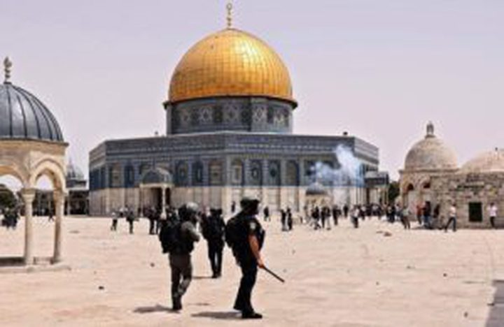 ثلاثة شهداء و146 معتقلا و516 إصابة في القدس خلال أيّار المنصرم