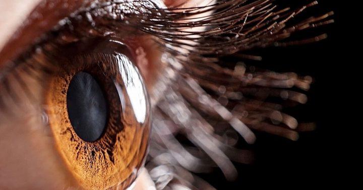 هل يكشف حجم بؤبؤ العين عن معدل ذكاء الفرد ؟