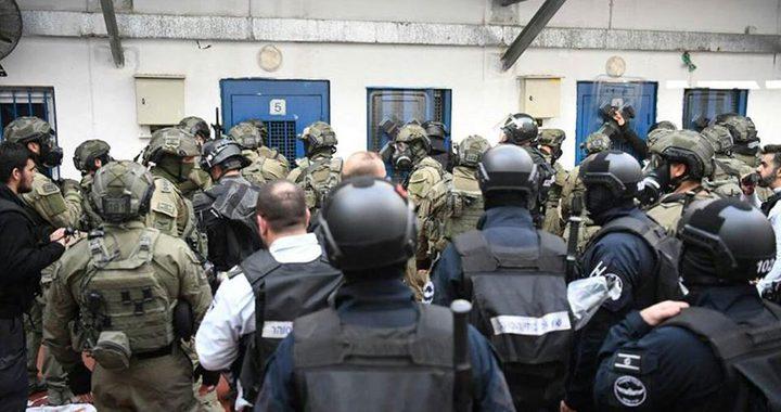 """إصابة 3 أسرى إثر اقتحام قوات القمع قسم (7) بسجن """"مجدو"""""""