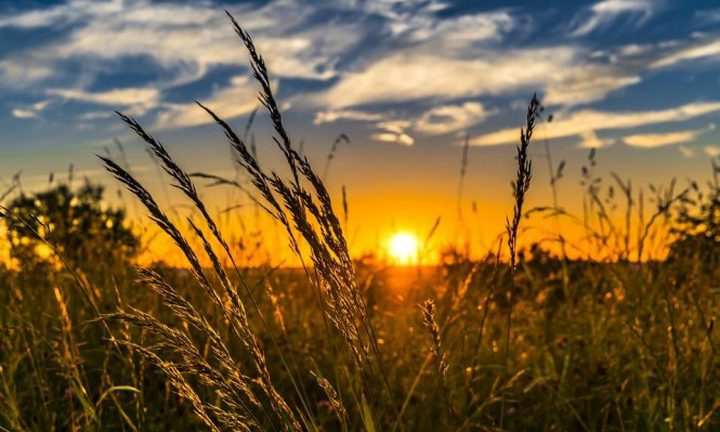 الطقس: أجواء صافية والحرارة أعلى من معدلها العام